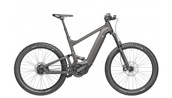 Riese & Muller Delite Mountain Rohloff  2020