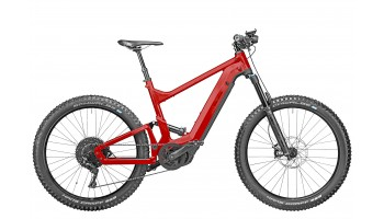 Riese & Muller Delite Mountain Touring 2020