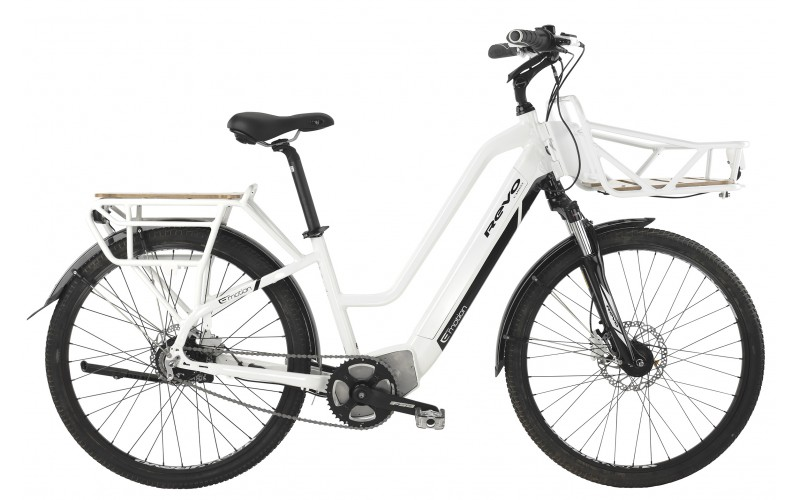 A Cargo Delivery eBike
